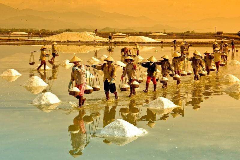 The beauty of salt fields in Vietnam3.jpg