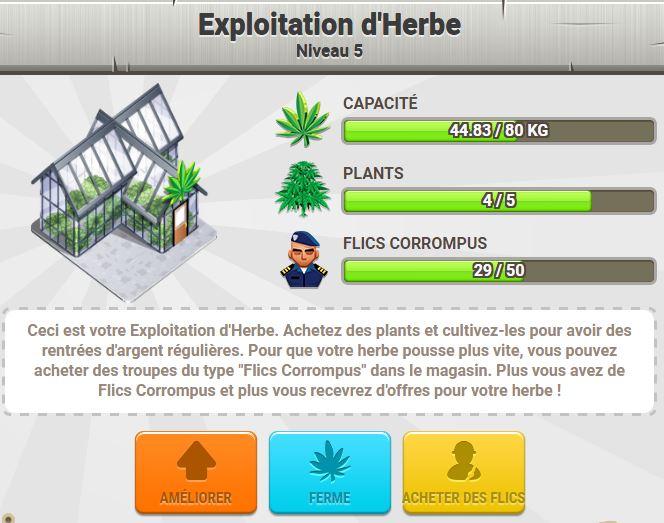 exploitation-herbes.JPG