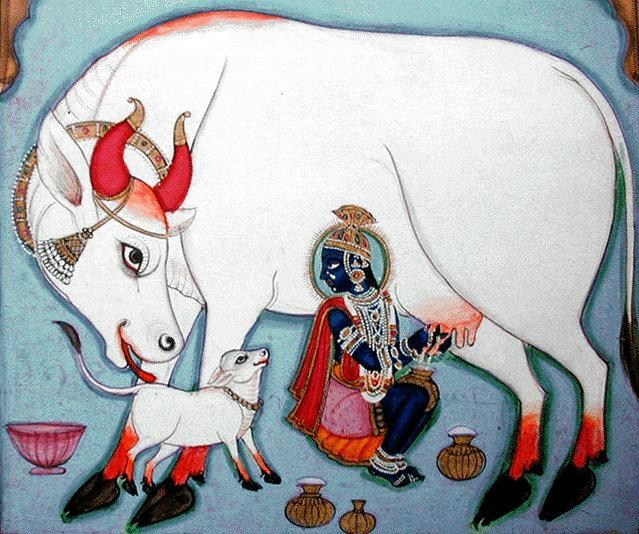 Krishna, ou Govinda, celui qui aime les vaches