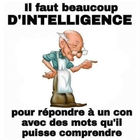 intelligence - Copie.jpg